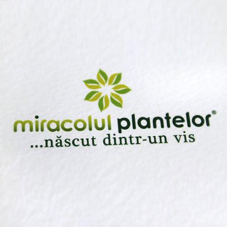 Miracolul plantelor - identitate vizuala